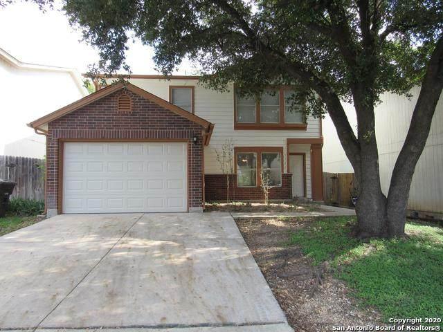 15522 Cross Vine, San Antonio, TX 78247 (MLS #1459269) :: The Gradiz Group