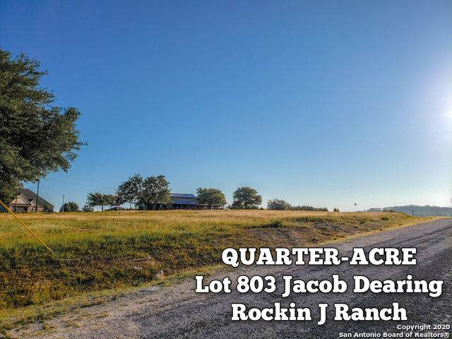 LOT 803 Jacob Dearing, Blanco, TX 78606 (MLS #1459292) :: The Castillo Group