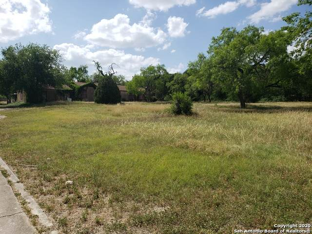 553 W Broadview Dr, San Antonio, TX 78228 (MLS #1459339) :: The Castillo Group