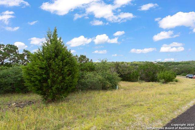 300 County Road 2801, Mico, TX 78056 (MLS #1459385) :: The Glover Homes & Land Group