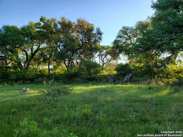 206 Jeff Vaughn, Blanco, TX 78606 (MLS #1459420) :: Tom White Group