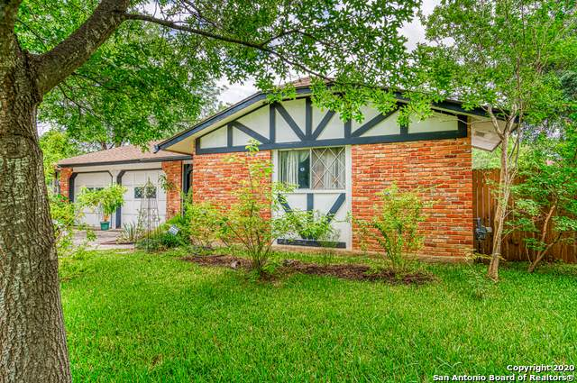 4114 Bloomdale, San Antonio, TX 78218 (MLS #1459428) :: Alexis Weigand Real Estate Group