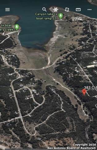 395 Cliffview, Canyon Lake, TX 78133 (MLS #1459519) :: The Castillo Group