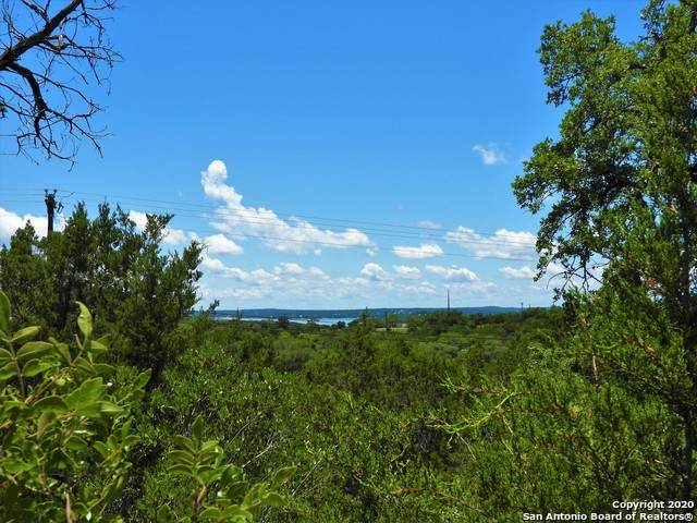 LOT 71 Pr 1712, Mico, TX 78056 (MLS #1459574) :: The Glover Homes & Land Group