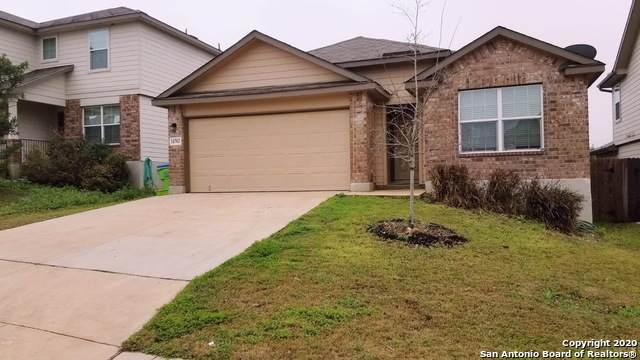 11702 Garnet Sunset, San Antonio, TX 78245 (MLS #1459634) :: Carolina Garcia Real Estate Group