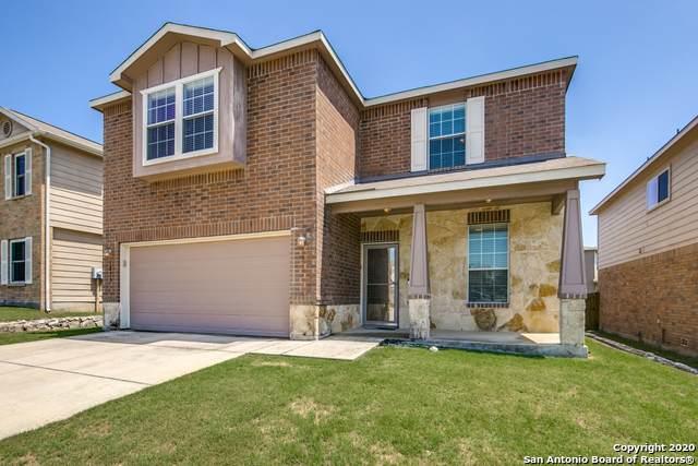 3810 Texas Hawthorn, San Antonio, TX 78261 (MLS #1459662) :: ForSaleSanAntonioHomes.com