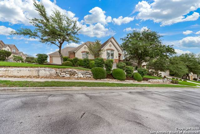 23732 Red Eagle, San Antonio, TX 78258 (MLS #1459920) :: Vivid Realty
