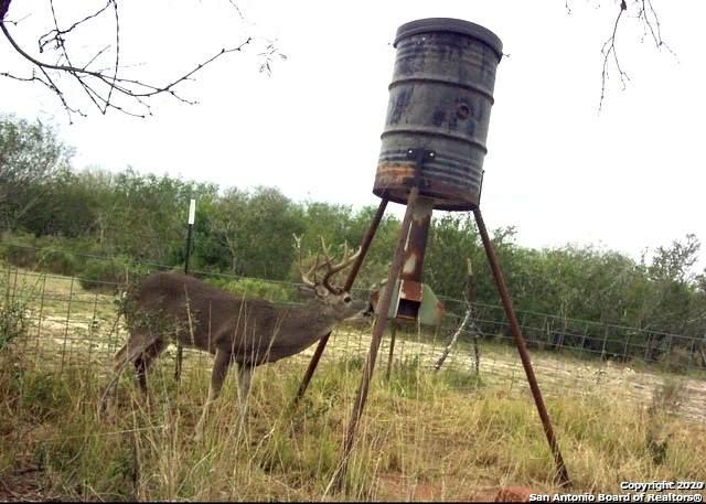 6654 Cr 2500, Bigfoot, TX 78005 (MLS #1459932) :: BHGRE HomeCity San Antonio