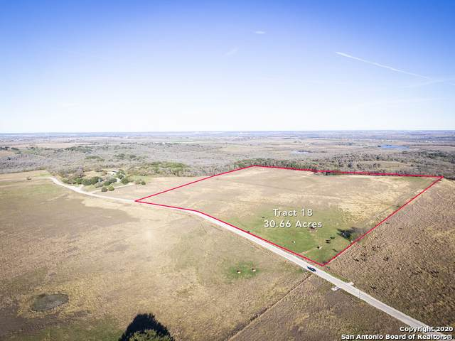 925 Branch Road, Geronimo, TX 78155 (MLS #1460158) :: 2Halls Property Team | Berkshire Hathaway HomeServices PenFed Realty