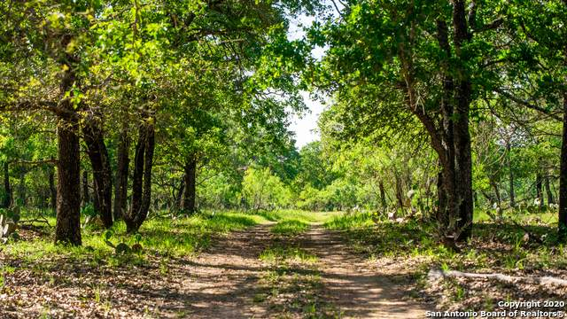009 Old Seguin Luling Rd, Seguin, TX 78155 (MLS #1460183) :: The Mullen Group | RE/MAX Access