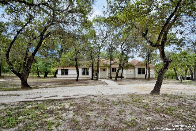 164 Scenic Oak Dr, Floresville, TX 78114 (MLS #1460345) :: Maverick