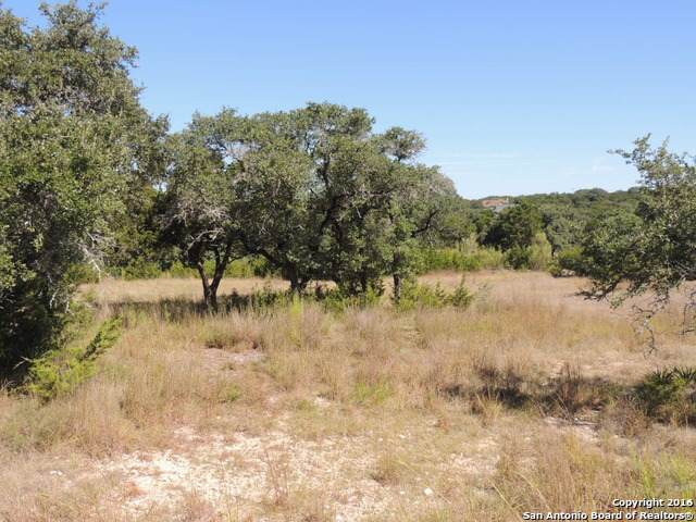 1837 Split Mtn, Canyon Lake, TX 78133 (MLS #1460408) :: The Losoya Group