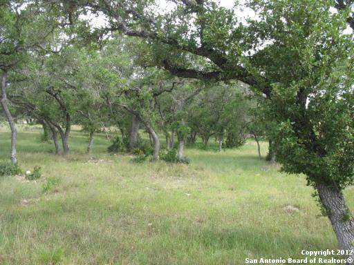 2487 George Pass, Canyon Lake, TX 78133 (MLS #1460410) :: Santos and Sandberg