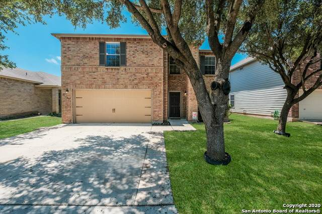 11302 Oro Canyon, San Antonio, TX 78254 (MLS #1460432) :: The Losoya Group
