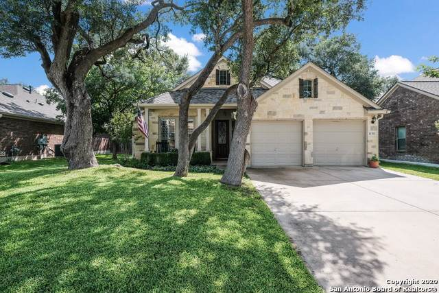 11311 Massive Mt, Helotes, TX 78023 (MLS #1460466) :: Alexis Weigand Real Estate Group