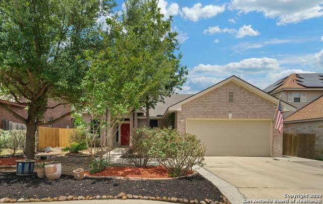 4639 Branching Bay, San Antonio, TX 78259 (MLS #1460468) :: The Losoya Group