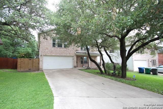 17015 Thicket Palm, San Antonio, TX 78247 (MLS #1460566) :: Maverick