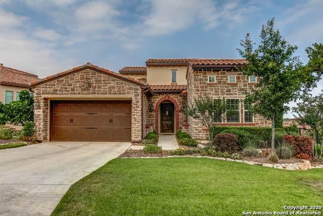 22906 Entiempo, San Antonio, TX 78261 (MLS #1460604) :: The Castillo Group