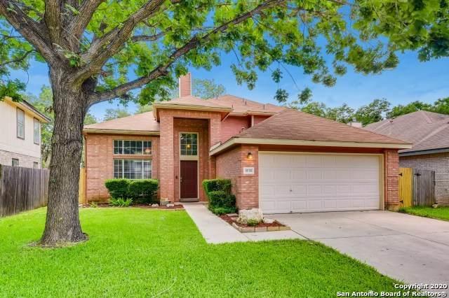 8550 Quail Tree, San Antonio, TX 78250 (MLS #1460708) :: The Castillo Group