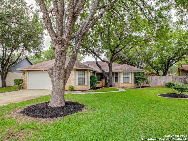 7117 Cloudview, San Antonio, TX 78250 (MLS #1461395) :: Alexis Weigand Real Estate Group