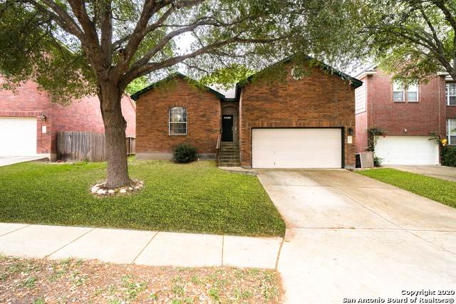 7 Cove Creek Dr, San Antonio, TX 78254 (MLS #1461403) :: Alexis Weigand Real Estate Group