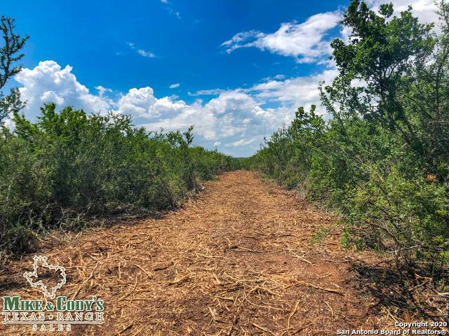 000 Cr 2000, Pearsall, TX 78061 (MLS #1461427) :: The Mullen Group | RE/MAX Access