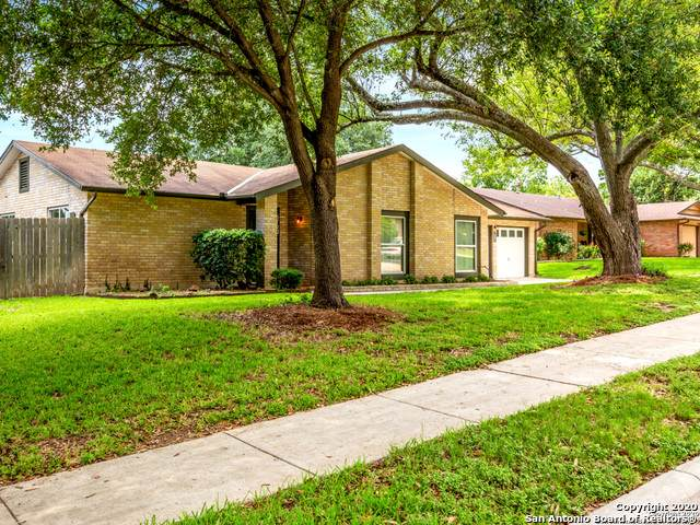5722 Pine Country St, San Antonio, TX 78247 (MLS #1461539) :: The Heyl Group at Keller Williams