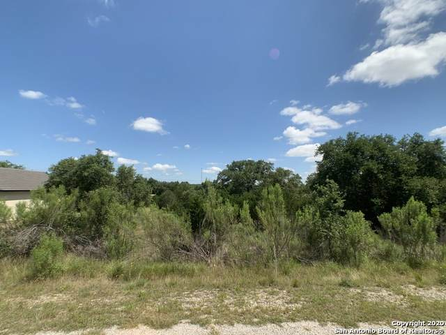 389 Blackbird Dr, Spring Branch, TX 78070 (MLS #1461703) :: ForSaleSanAntonioHomes.com