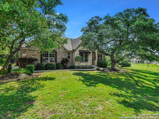410 Mill Run, New Braunfels, TX 78132 (MLS #1461855) :: The Heyl Group at Keller Williams