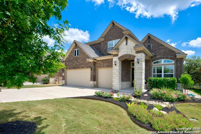 10334 Rocamora, Helotes, TX 78023 (#1462032) :: The Perry Henderson Group at Berkshire Hathaway Texas Realty