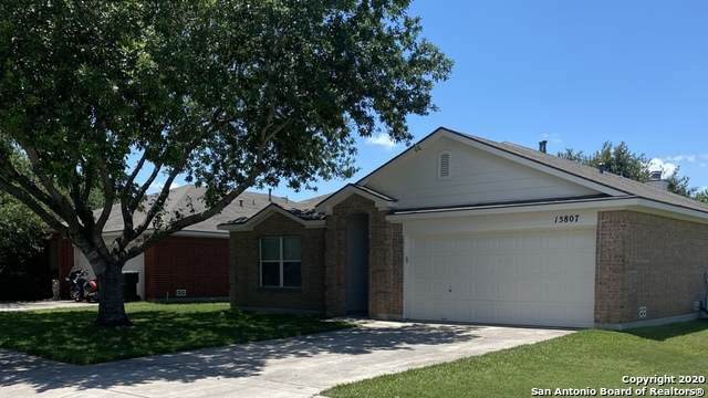 15807 Beaufort Blvd, Selma, TX 78154 (MLS #1462114) :: HergGroup San Antonio Team