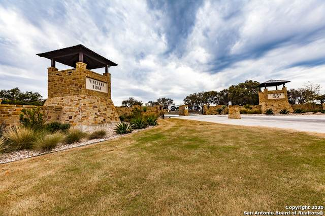 LOT 9 Thriving Oak Dr, Fredericksburg, TX 78624 (#1462319) :: The Perry Henderson Group at Berkshire Hathaway Texas Realty