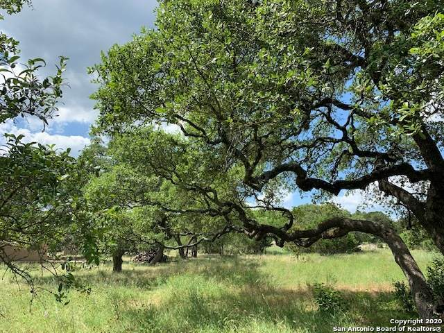 263 Paradise Hills, New Braunfels, TX 78132 (MLS #1462421) :: The Glover Homes & Land Group