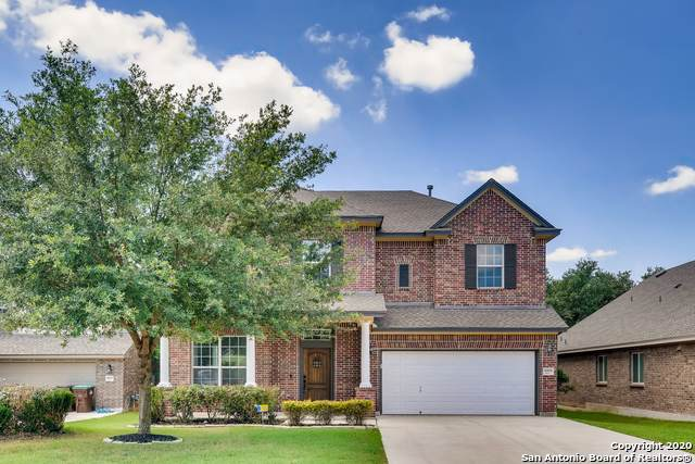 10614 Larch Grove Ct, Helotes, TX 78023 (#1462611) :: The Perry Henderson Group at Berkshire Hathaway Texas Realty
