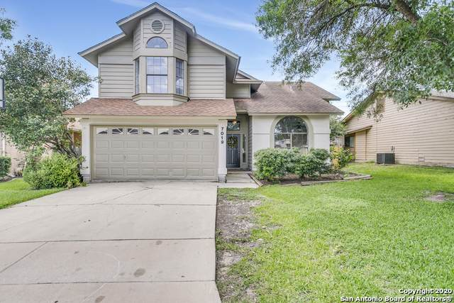 7019 Beech Trail Dr, San Antonio, TX 78244 (#1462733) :: The Perry Henderson Group at Berkshire Hathaway Texas Realty