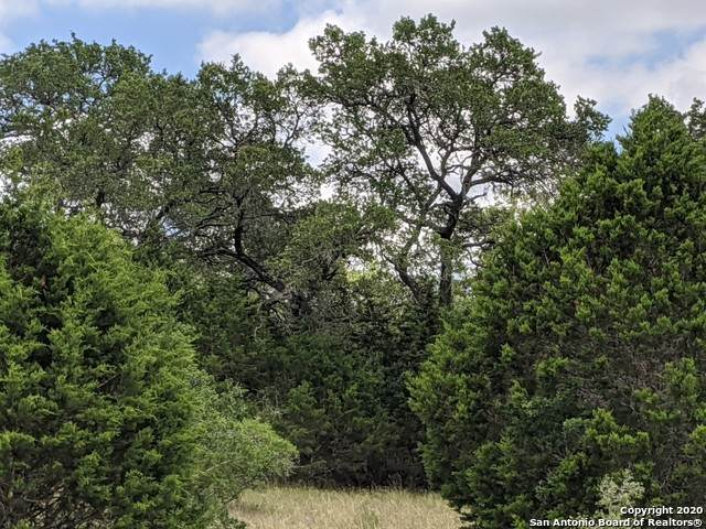 429 Cavy Rd, New Braunfels, TX 78132 (MLS #1462820) :: The Glover Homes & Land Group