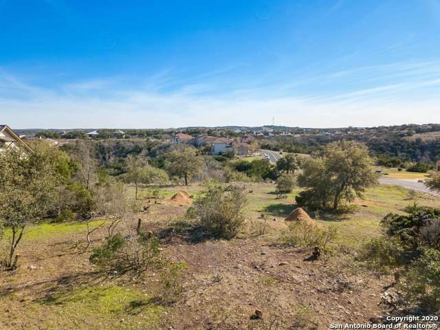 101 Morning View Cir, Boerne, TX 78006 (#1462830) :: The Perry Henderson Group at Berkshire Hathaway Texas Realty