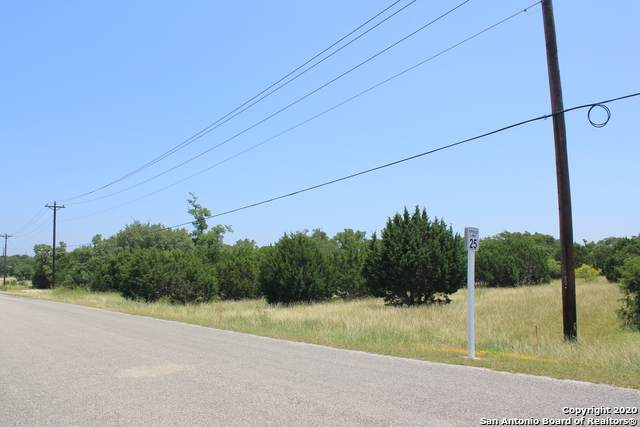 314 Lets Roll Dr, Fischer, TX 78623 (MLS #1462945) :: The Heyl Group at Keller Williams