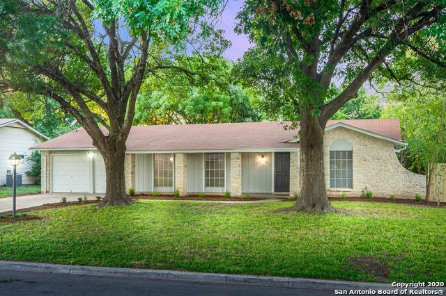 4131 Willow Green Dr, San Antonio, TX 78217 (MLS #1463257) :: Alexis Weigand Real Estate Group