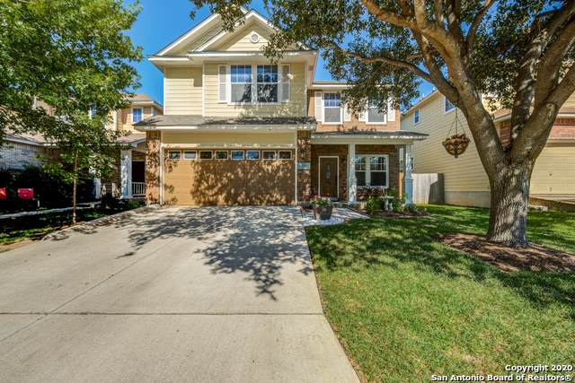 20621 Tree Mdw, San Antonio, TX 78258 (MLS #1463448) :: The Castillo Group