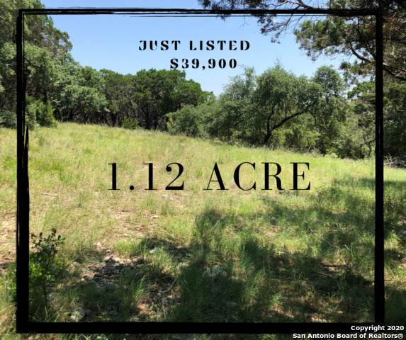 304 Private Road 1703, Helotes, TX 78023 (MLS #1463682) :: The Glover Homes & Land Group