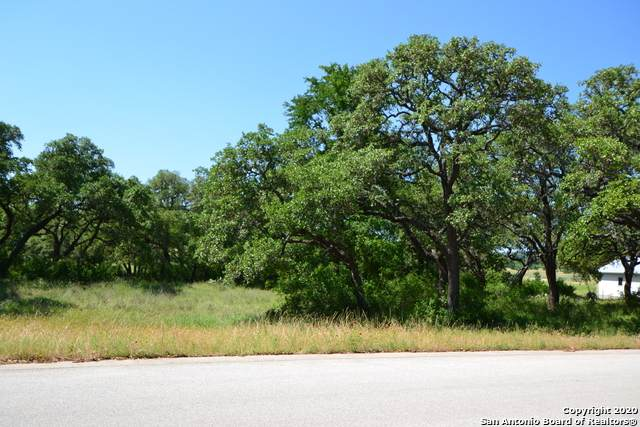 100 Wranglers Way, Burnet, TX 78611 (MLS #1463871) :: Alexis Weigand Real Estate Group