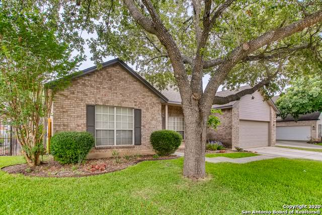 18118 Cerca Piedra, San Antonio, TX 78259 (MLS #1464120) :: The Castillo Group