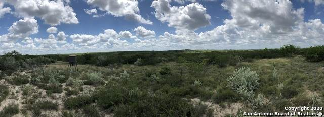 00 Bobcat Drive, George West, TX 78022 (MLS #1464324) :: Real Estate by Design