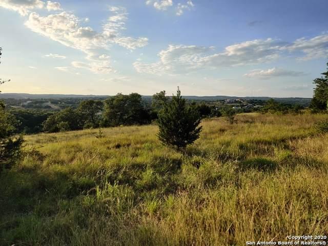 1083 Star Ridge, Spring Branch, TX 78070 (MLS #1464521) :: The Castillo Group
