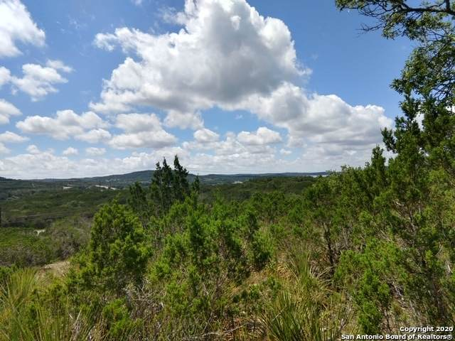 LOT 40 Scenic Sunset, Lakehills, TX 78603 (MLS #1464626) :: Real Estate by Design