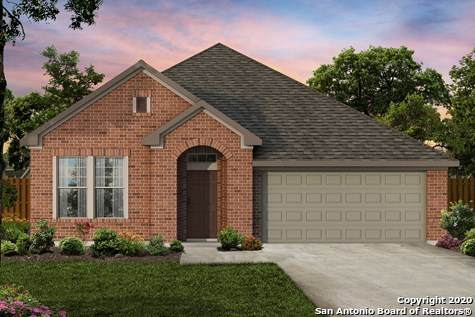 10215 High Noon Dr, San Antonio, TX 78254 (#1464736) :: The Perry Henderson Group at Berkshire Hathaway Texas Realty