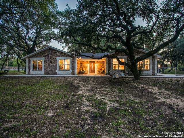 113 Cynthia Dr, Pleasanton, TX 78064 (MLS #1464879) :: Alexis Weigand Real Estate Group
