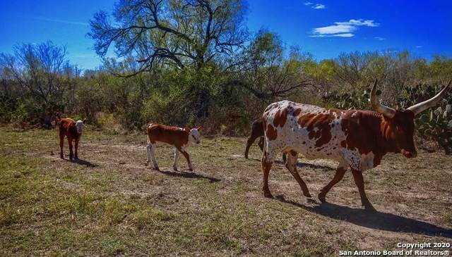 963 County Road 255, McCoy, TX 78113 (MLS #1464919) :: The Heyl Group at Keller Williams