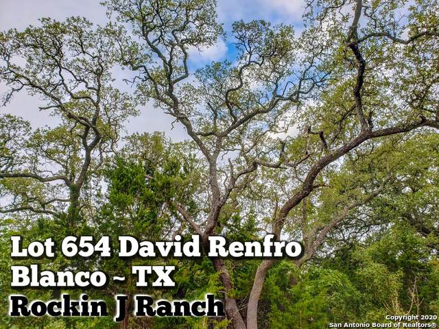LOT 654 David Renfro, Blanco, TX 78606 (MLS #1465010) :: The Heyl Group at Keller Williams